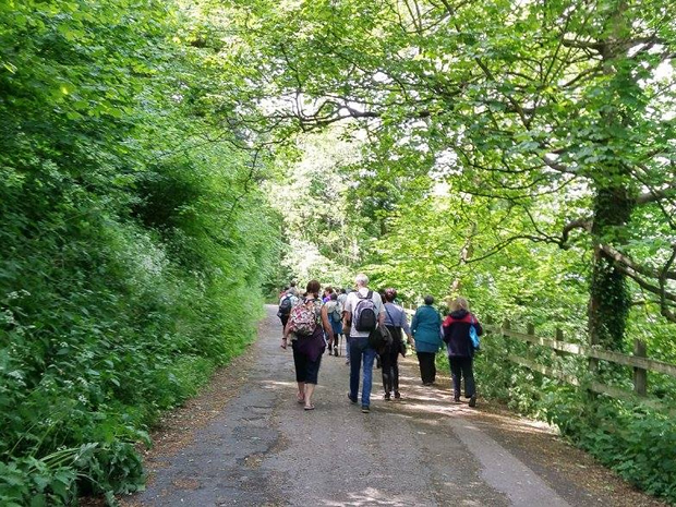 Explore Bristol's beautiful walking routes during this year's festival.