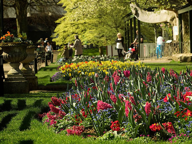 Discover the wonders of Bristol Zoo Gardens and receive discounted entry by cycling there.